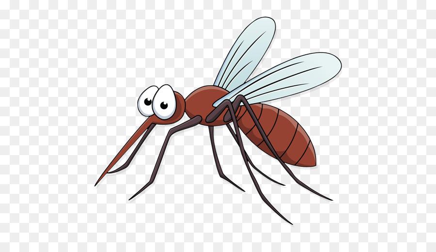 Комар прозрачный фон картинки