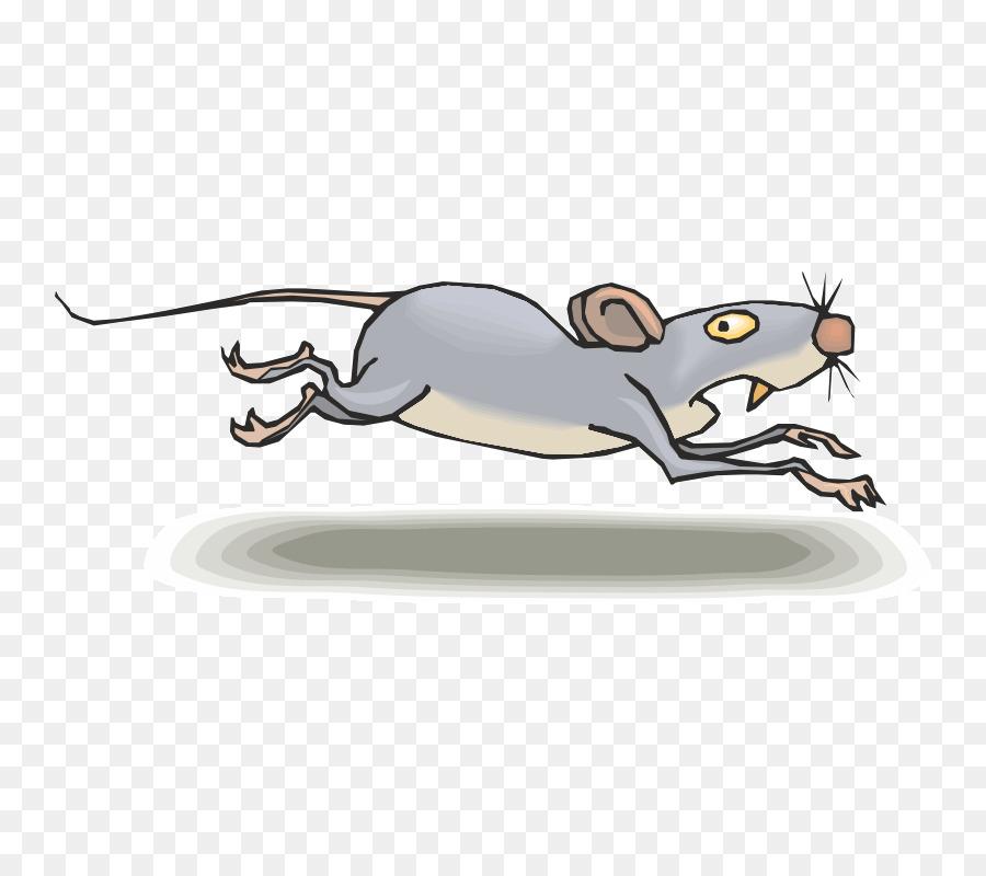 картинка боюсь крыс кроме полезных функций