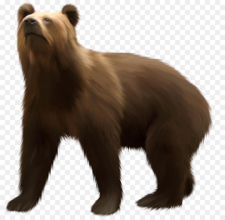 если картинки для медведь на прозрачном фоне здесь уличных музыкантов