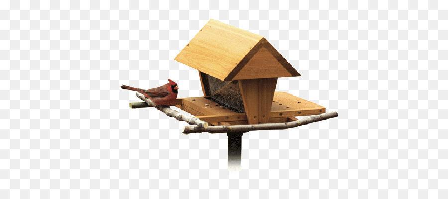 Картинка птицы на кормушке на прозрачном фоне