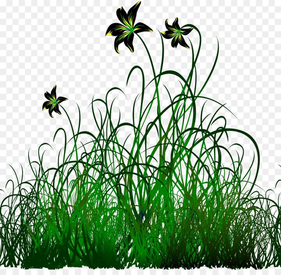 Картинки рисунки трава