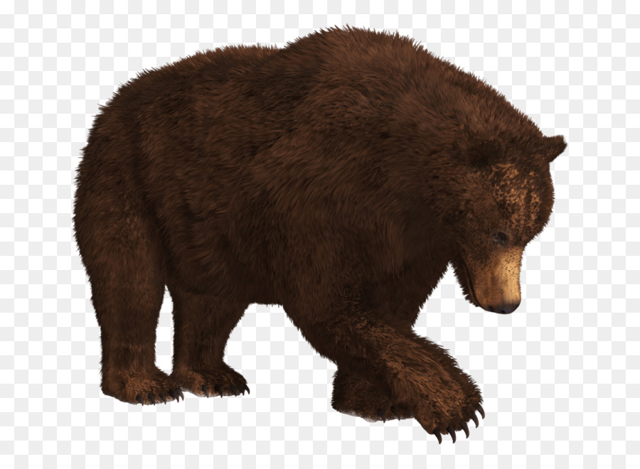 картинки для медведь на прозрачном фоне данного вида росписи
