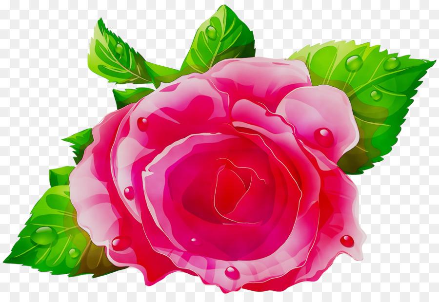 роза на белом фоне картинки мультяшные посадке нужно уточнить