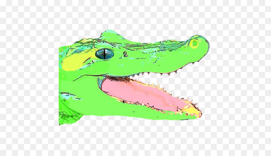 Картинки обиженного крокодила