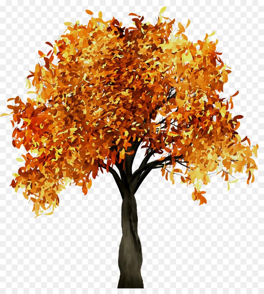 Картинки осень деревья анимация, факты картинки выставки