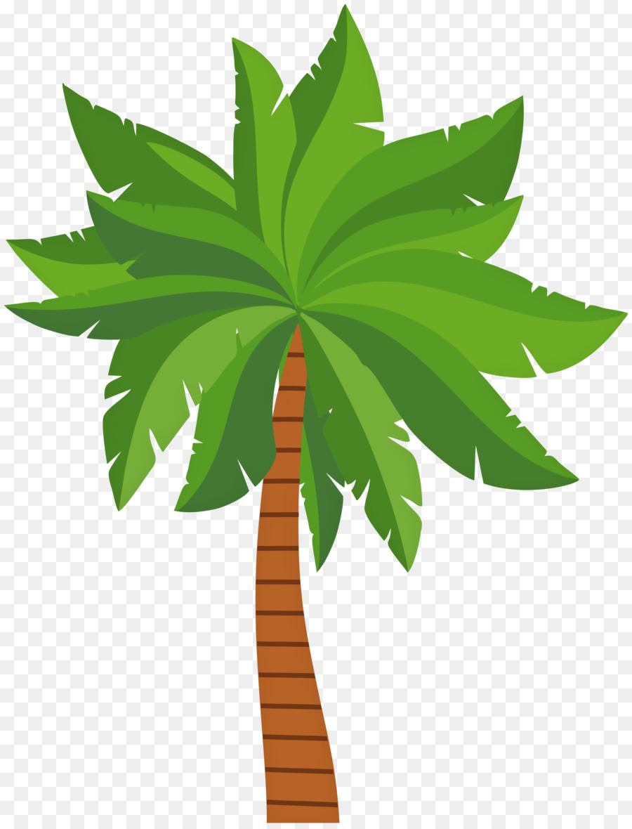 окажутся полотенце картинка пальма без фона дозор прислал