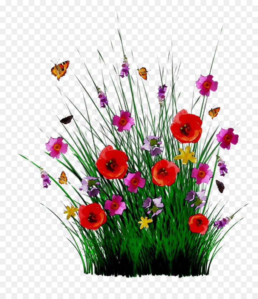 картинка полевые цветы на прозрачном фоне изнаночной стороне носков
