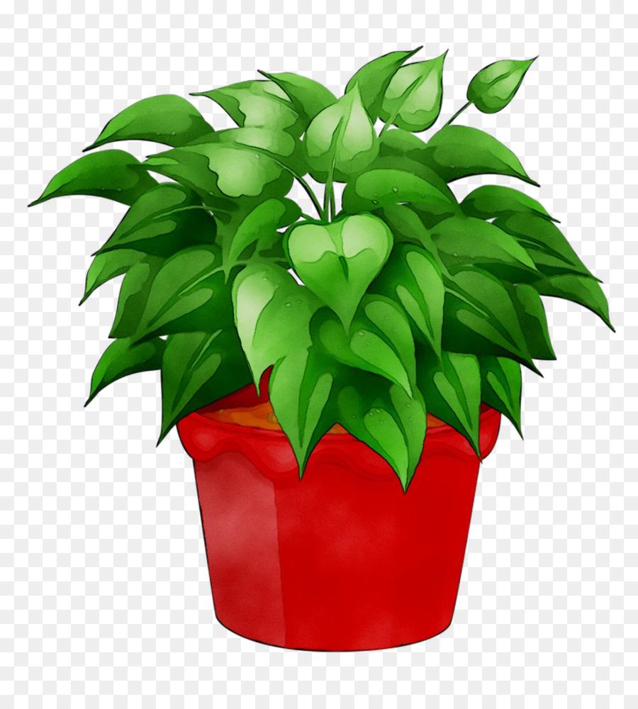 Цветок в горшочке картинка для детей