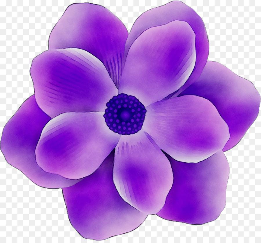 Цветок картинки без фона