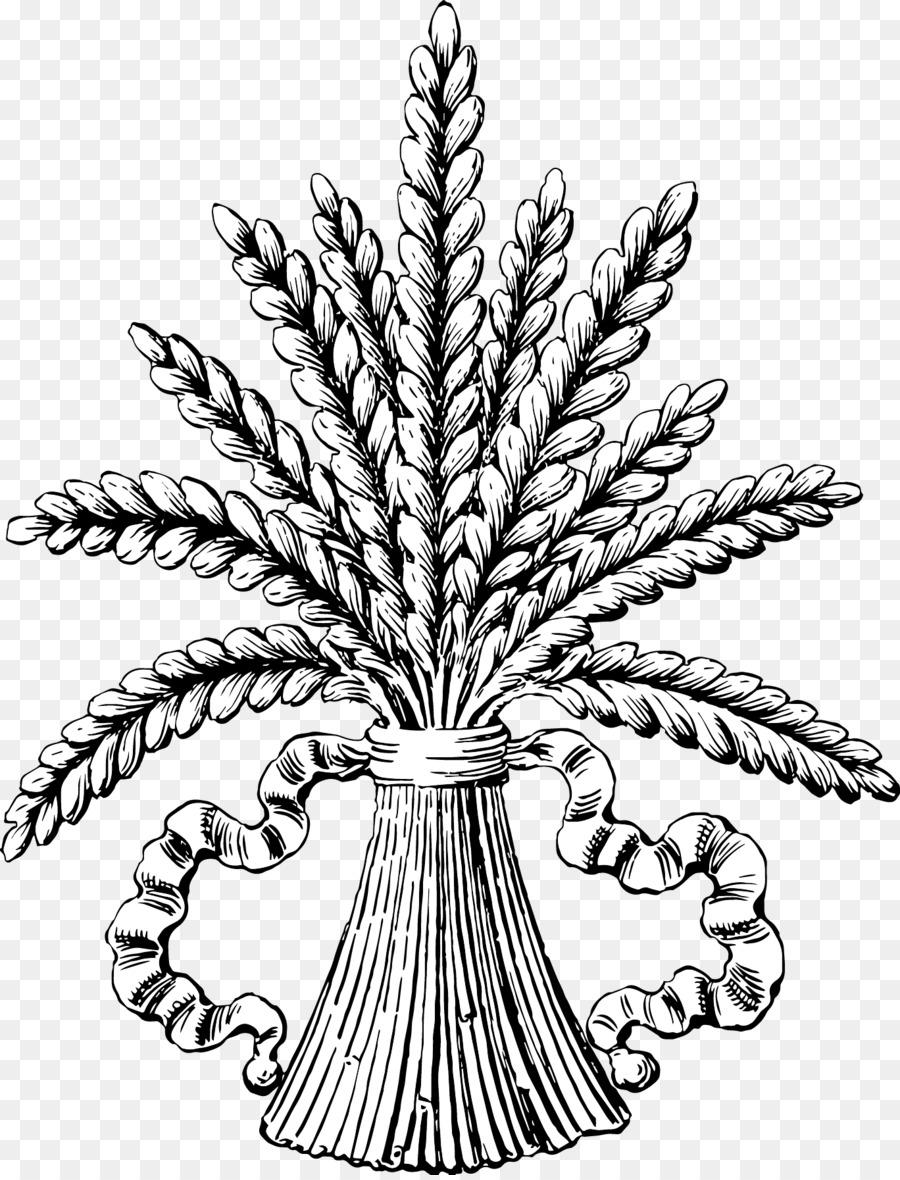 Рисунок снопа пшеницы