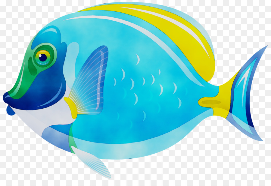 Рыбки рисунок картинки