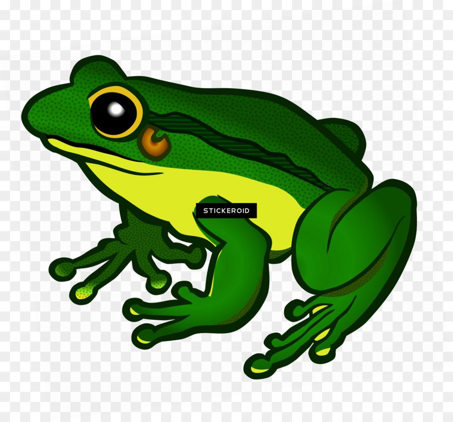 картинка лягушонка из игры зеркала