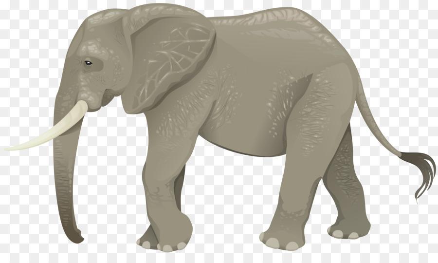 Слон в картинках на прозрачном фоне, картинки пин картинки
