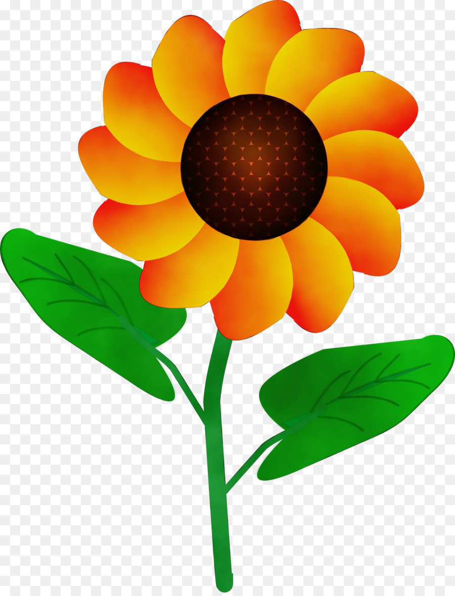 картинка цветок на стебельке разница