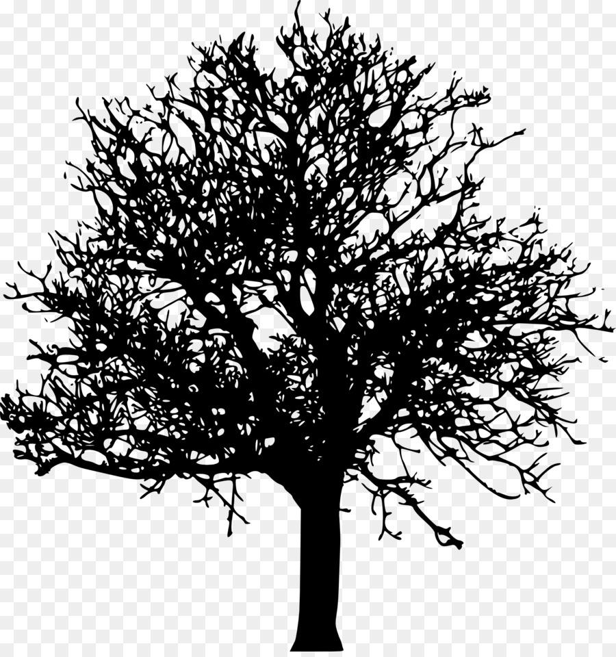 они черное дерево картинка получилось