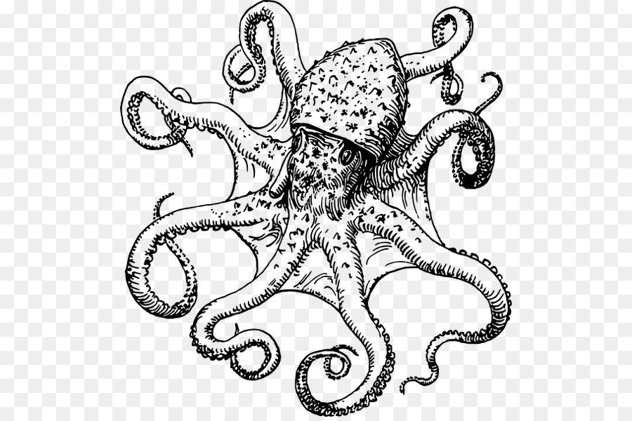 Картинки осьминога для срисовки