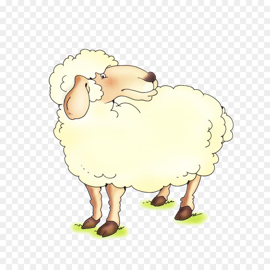 Картинка команда, картинки овечка для детей на прозрачном фоне