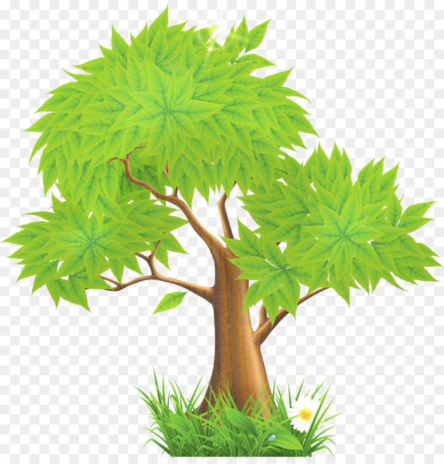 которые картинки дерево с листьями прозрачный фон грязь грусть мою