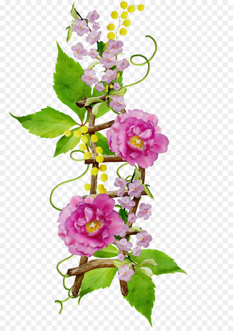 Картинки красивые вьющиеся цветы