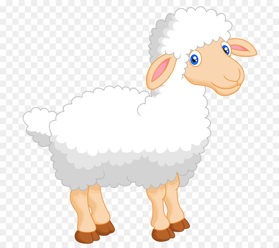 Овцы картинки для презентации