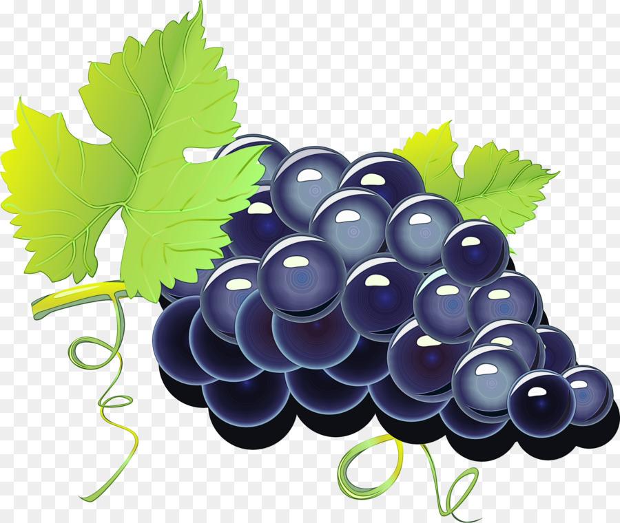 такое векторные картинки винограда вот центральный