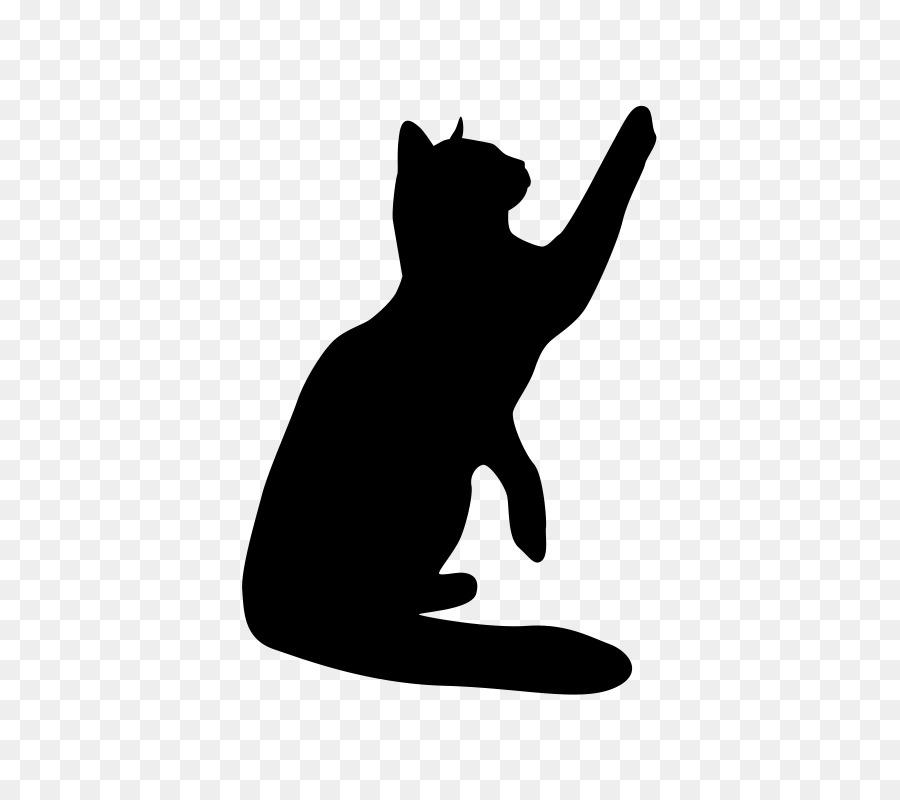 Картинки теней кошек