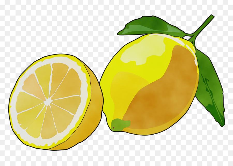 Картинка лимона нарисованного