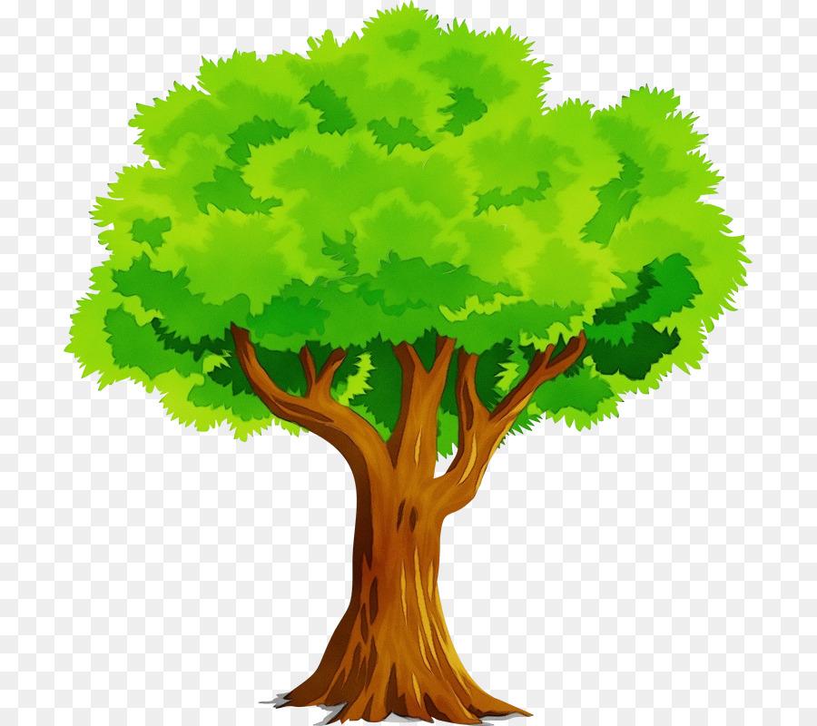 Изображение дерева картинка
