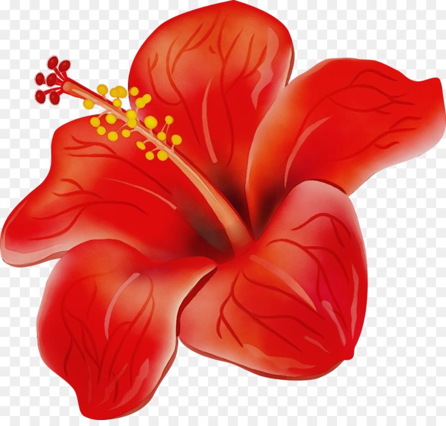 многим красный цветок рисунок футбола