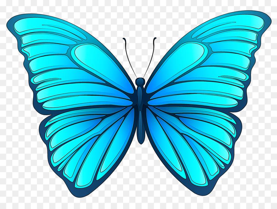 Картинки для детей нарисованные бабочки