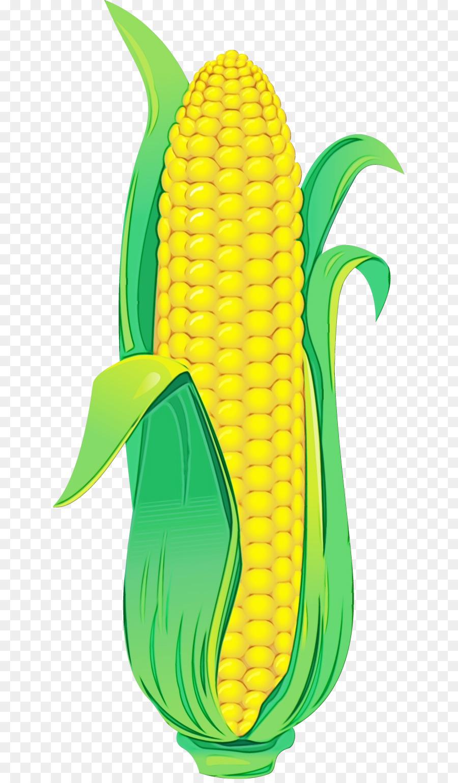 Кукуруза картинка для детей с надписью