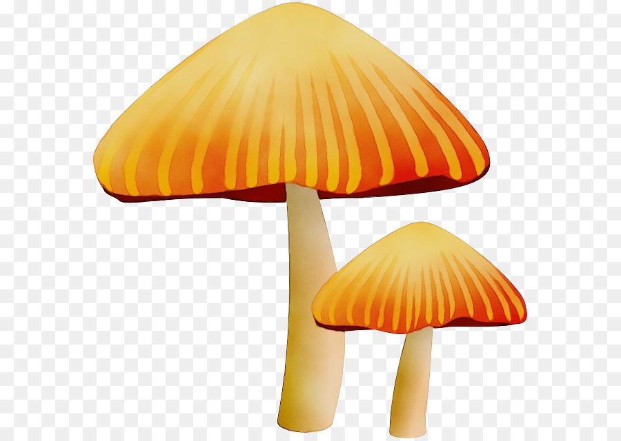 гриб,