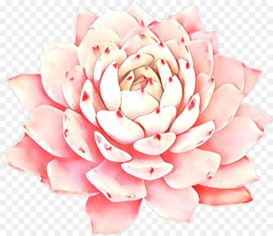 розовый,