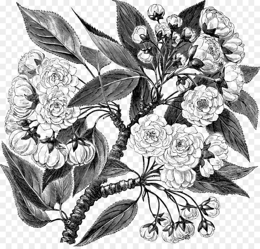 Картинки тарелочки с цветами природа
