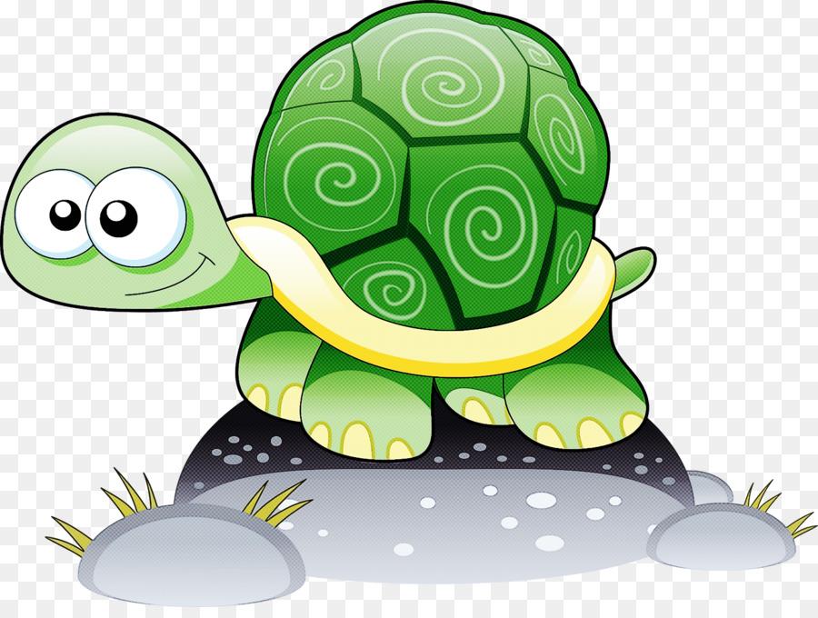 Картинка черепашка для детей на белом фоне