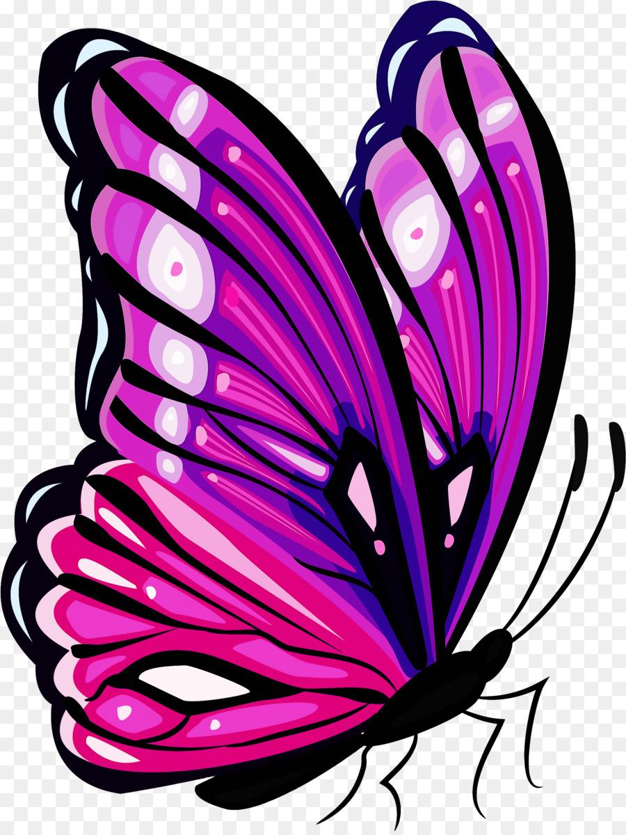 Картинка бабочки пони